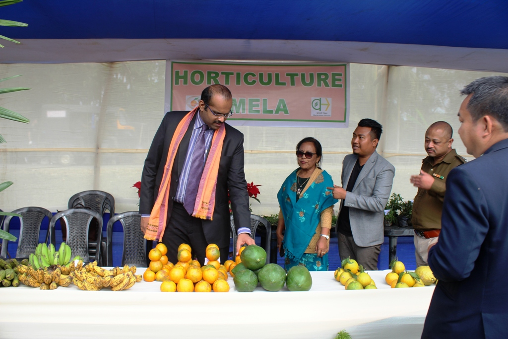 SWGH DC Ramkumar S inspects the Horticulture Mela stall during Dimchrang Winter Festival at Ampati on Dec 19.